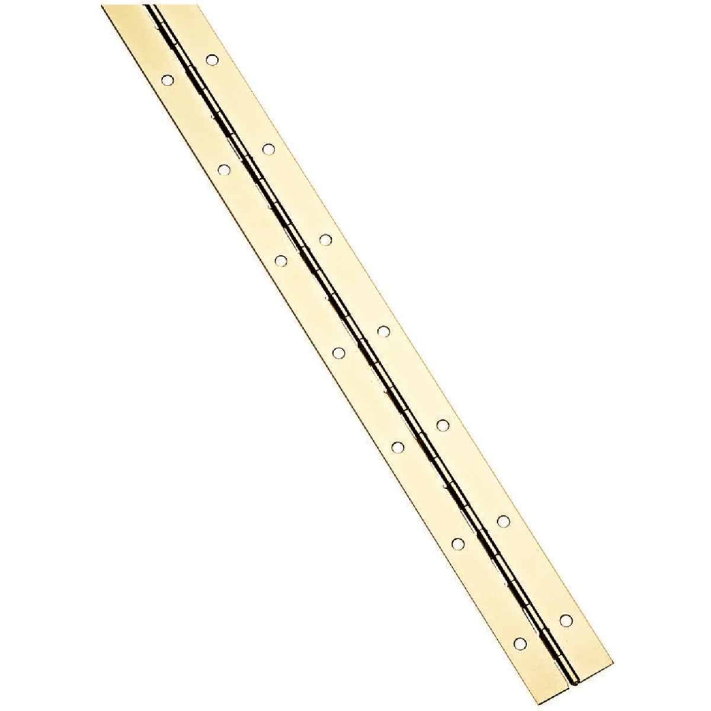 National Steel 1-1/2 In. x 72 In. Bright Brass Continuous Hinge Image 1